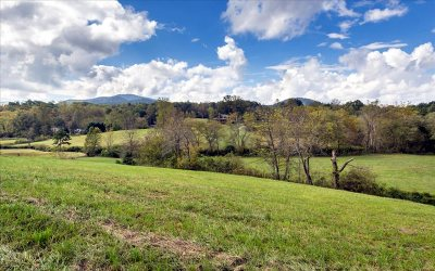 Young Harris Residential Lots & Land For Sale: 1383 Brasstown Creek