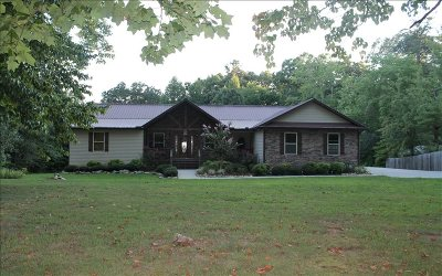 Ellijay Single Family Home For Sale: 3756 E Highway 52