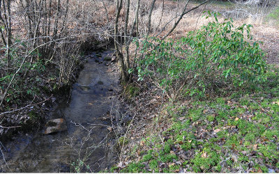 Blairsville Residential Lots & Land For Sale: 12.79 Acres Mull Rd