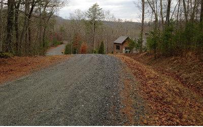 Blue Ridge Residential Lots & Land For Sale: Lt 45 Blackgum Lane