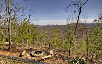 Blue Ridge Single Family Home For Sale: 386 Raintree Bend