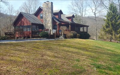 Blairsville Single Family Home For Sale: 1163 Elisha Payne Circle