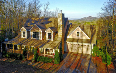 Mineral Bluff Single Family Home For Sale: 249 Shangri La Drive