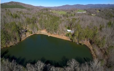 Ellijay Single Family Home For Sale: 2308 Rackley Road