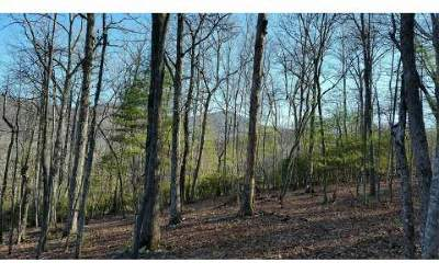 Residential Lots & Land For Sale: Lots 5 & 6 Coosa Forest
