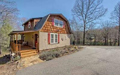 Hiawassee Single Family Home For Sale: 400 Sunnyside Estates