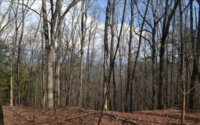 Residential Lots & Land For Sale: Turtle Ridge Road