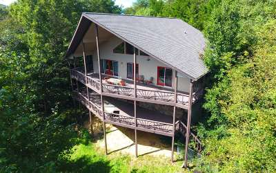 Young Harris Single Family Home For Sale: 822 Mining Gap Trail