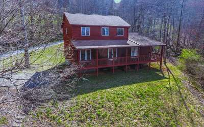 Hayesville Single Family Home For Sale: 766 South Brooks Cove Rd