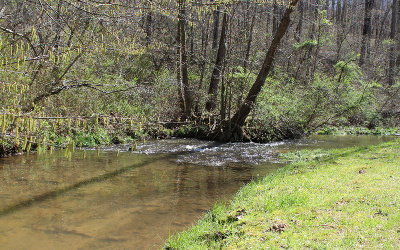 Towns County Residential Lots & Land For Sale: Lot34 Bell Creek Estates
