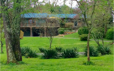 Brasstown Single Family Home For Sale: 216 Reese Road