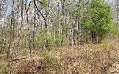 Fannin County Residential Lots & Land For Sale: Lt113 Laurel Trace