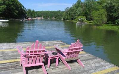 Blairsville Single Family Home For Sale: 69 Smokey Creek Cove