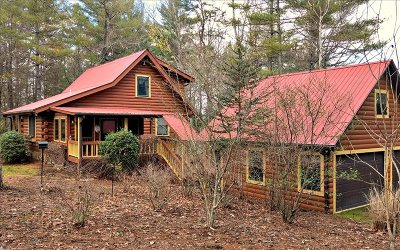 Blairsville Single Family Home For Sale: 310 W Nottely Woods W
