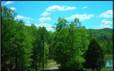 Fannin County Residential Lots & Land For Sale: Lt 62 Harbin Ct