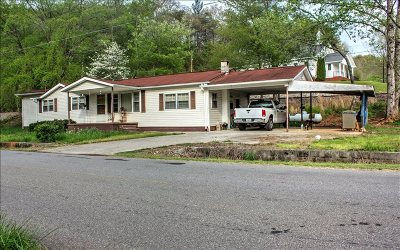Mineral Bluff Single Family Home For Sale: 455 River Road