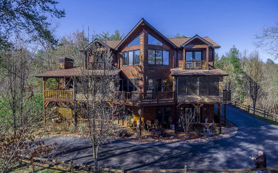 Blue Ridge Single Family Home For Sale: 181 Spirit Wind Court
