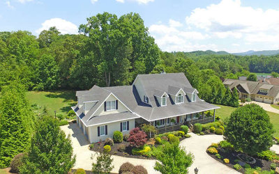 Hiawassee Single Family Home For Sale: 61 Hidden Fields Road