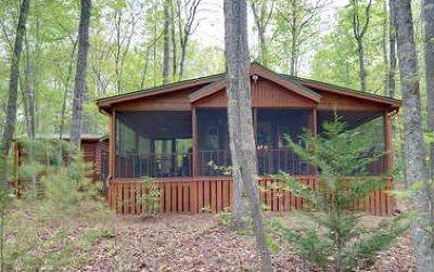 Blairsville Single Family Home For Sale: 390 Chimney Ridge
