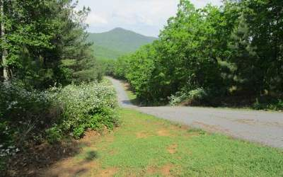 Residential Lots & Land For Sale: Lt 25 Loftis Mountain