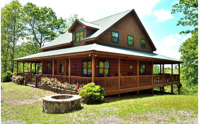 Hayesville Single Family Home For Sale: 699 Cliffside Drive