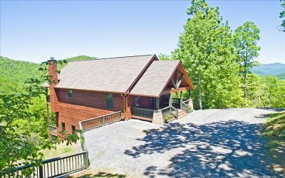 Hiawassee Single Family Home For Sale: 1281 Tipton Heights