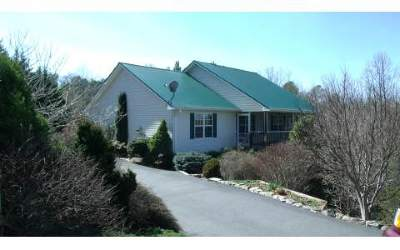 Blairsville Single Family Home For Sale: 252 Brookhaven