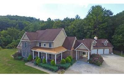 Blairsville Single Family Home For Sale: 718 Hidden Lake