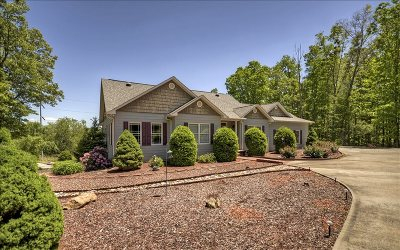 Blairsville Single Family Home For Sale: 507 West Woods