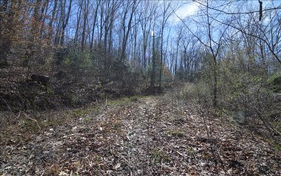 Hayesville Residential Lots & Land For Sale: Us Hwy 64 East