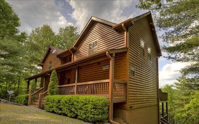 Mineral Bluff Single Family Home For Sale: 356 Rocking Chair Road