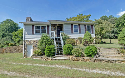 Cherokee County Single Family Home For Sale: 4587 Pisgah Road