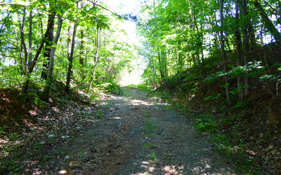 Young Harris Residential Lots & Land For Sale: Ll 49 Us Hwy 76 West