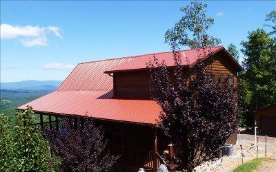 Murphy Single Family Home For Sale: 1071 Buck Ridge Drive