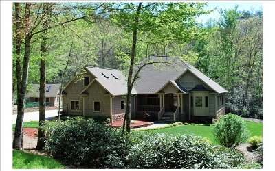 Hayesville Single Family Home For Sale: 190 Gold Mine Dr