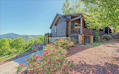 Hiawassee Single Family Home For Sale: 2389 The Ridges Rd