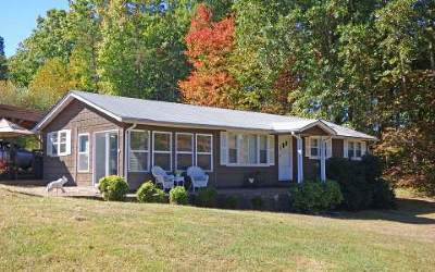 Mineral Bluff Single Family Home For Sale: 474 Salem Road