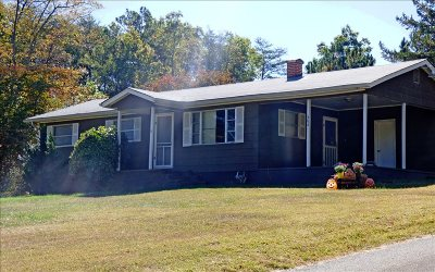 Mineral Bluff Single Family Home For Sale: 484 Salem Road