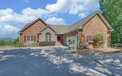 Hiawassee Single Family Home For Sale: 883 Ramey Mountain Road