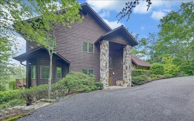Blairsville Single Family Home For Sale: 57 Wayne's Ln
