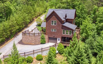Blairsville Single Family Home For Sale: 67 Timber Grace