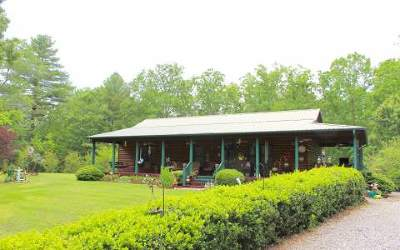 Mineral Bluff Single Family Home For Sale: 1411 Haygood Road