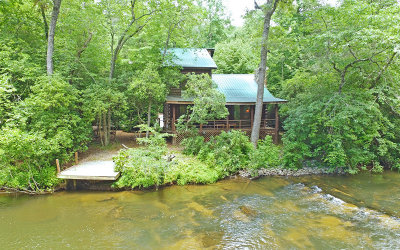 Blue Ridge Single Family Home For Sale: 1971 Dial Road