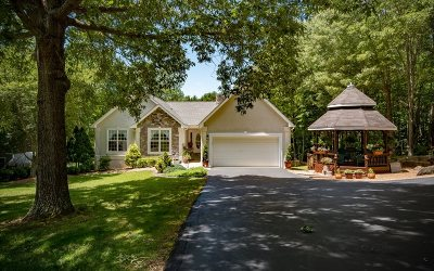 Hiawassee Single Family Home For Sale