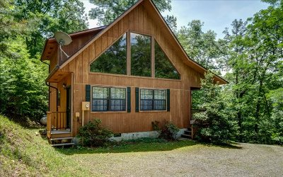 Brasstown Single Family Home For Sale: 164 Ridgeline Drive
