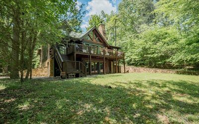 Blairsville Single Family Home For Sale: 293 Falcon Drive
