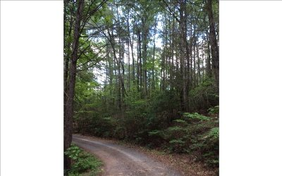 Murphy NC Residential Lots & Land For Sale: $45,000