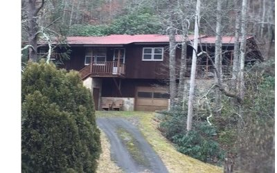 Brasstown Single Family Home For Sale: 312 Greasy Creek Road