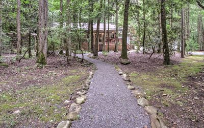 Ellijay Single Family Home For Sale: 5769 Old Bucktown Road