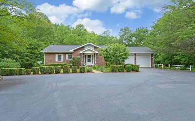 Blairsville Single Family Home For Sale: 41 Cold Springs Lane